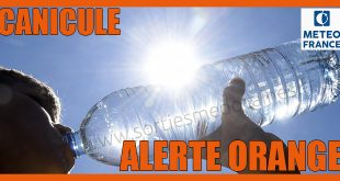 alerte-canicule-orange